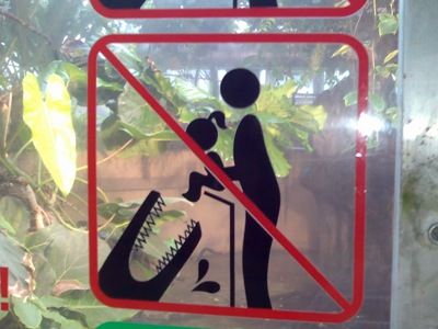 Крокодилов не кормить