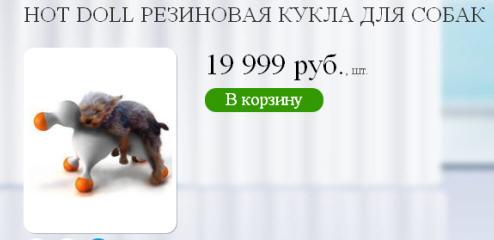 Подруга для собаки