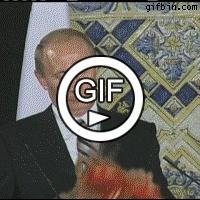 Путин и шарик