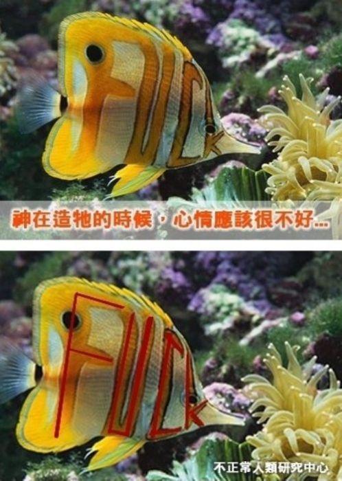 Надпись на рыбке