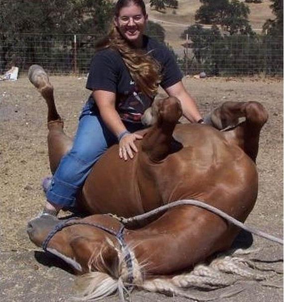 Коня на скаку остановит