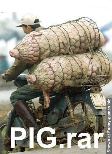 PIG.RAR