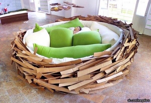 Колыбль-гнездо