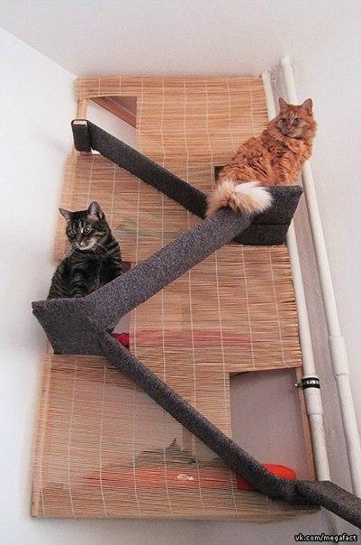 Спальное место для кошек