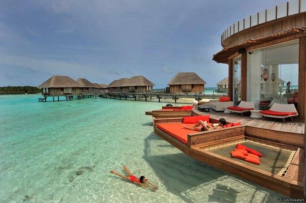 Тем временем на Мальдивах