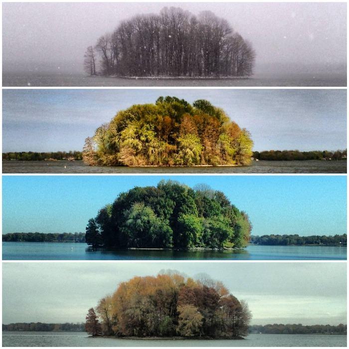 4 сезона на острове