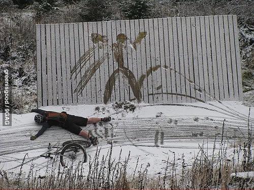 Зима жестока