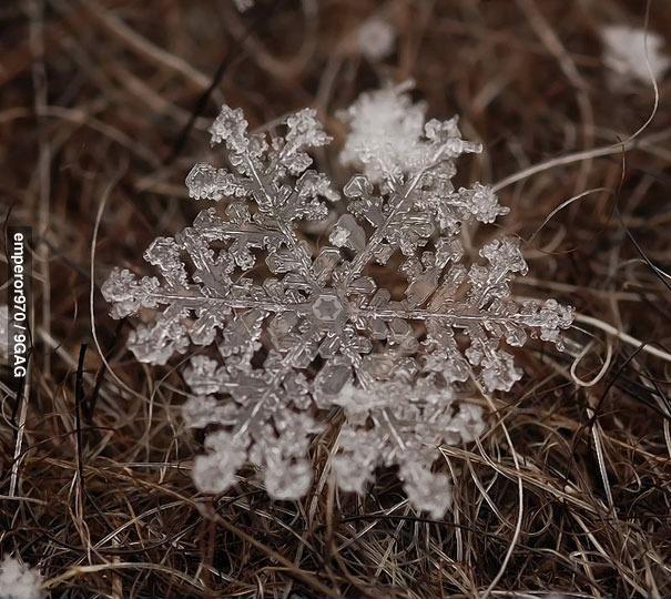 Увеличенная снежинка