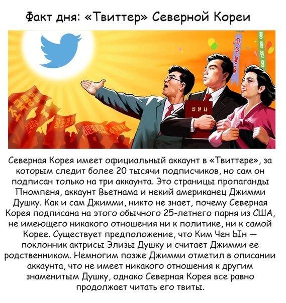 Твиттер Северной Кореи