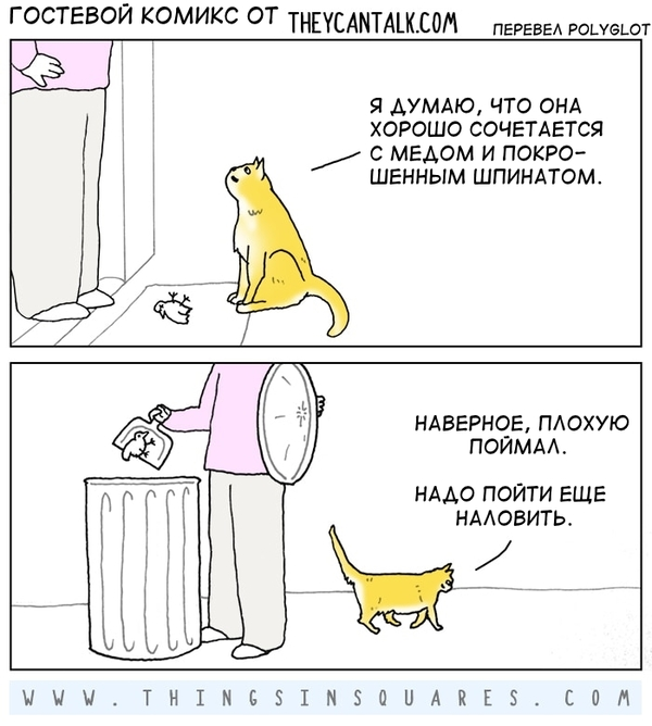 Про котов и птичек